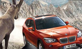 BMW_342x205